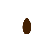 cacao-puro-en-polvo