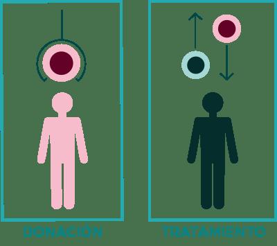 donacion-tratamiento