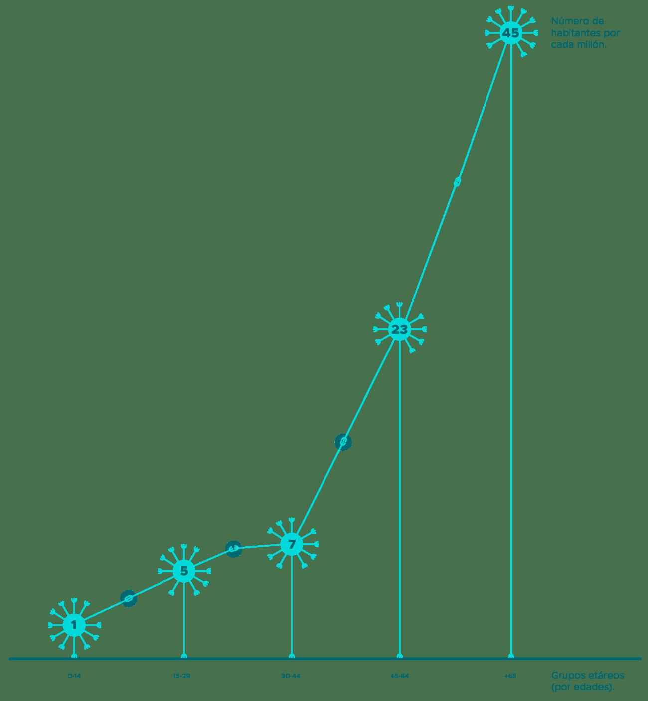 infografía médula osea
